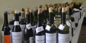"""S-a desfășurat etapa republicană a Concursului pentru cel mai bun vin de casă """"Polobocul de aur"""""""