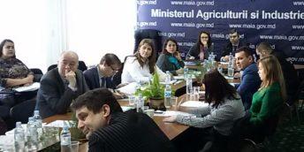 La Chișinău s-a desfășurat ședința grupului de lucru pentru analiza și avizarea legislației privind învățământul dual