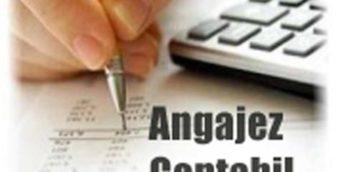 Angajăm Contabil, Direcţia finanţe şi evidenţă contabilă