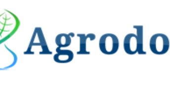 """Întreprinderea SC """"Agrodor- Succes"""" SRL participă la Programul de Parteneriat"""