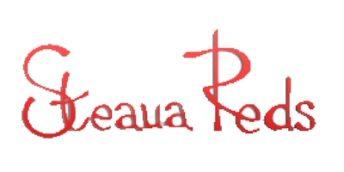 """ÎCS """"Steaua-Reds"""" S.A. participă la Programul de Parteneriat al Camerei de Comerț și Industrie a R. Moldova"""
