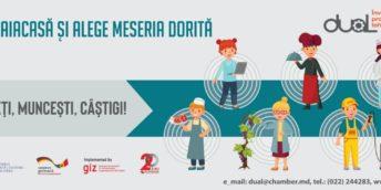Pedagogia școlară – Învățământul Dual