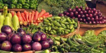 Producătorii agricoli vor putea realiza mărfurile agricole vegetale în Chișinău și Bălți